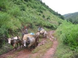 Rejser i Myanmar