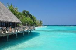 Maldiverne og Jamaica