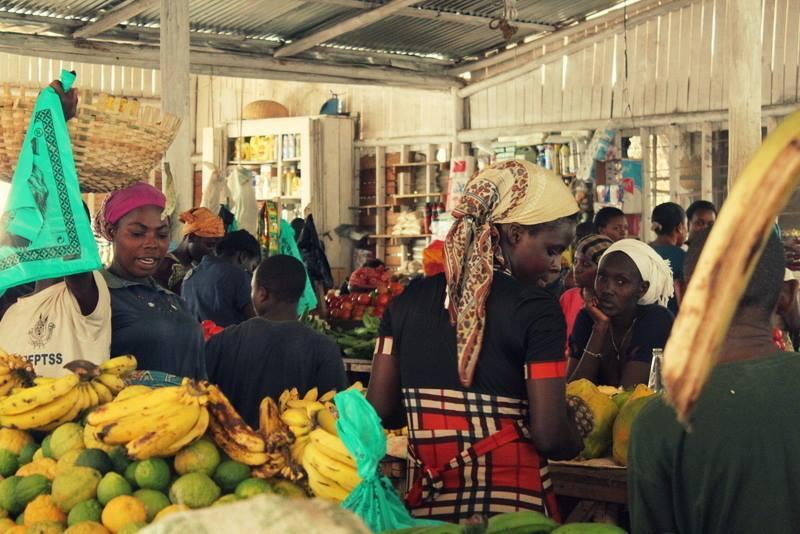 Ekspedition gennem Centralafrika