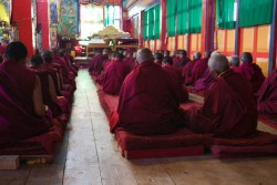 Nuns at Thubten Choling APR 2016