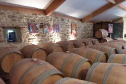 Vinsmagning af økologiske og biodynamiske vine fra Bordeaux